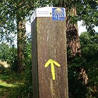 Pelgrimsweg met Jacobsschelp en gele pijl